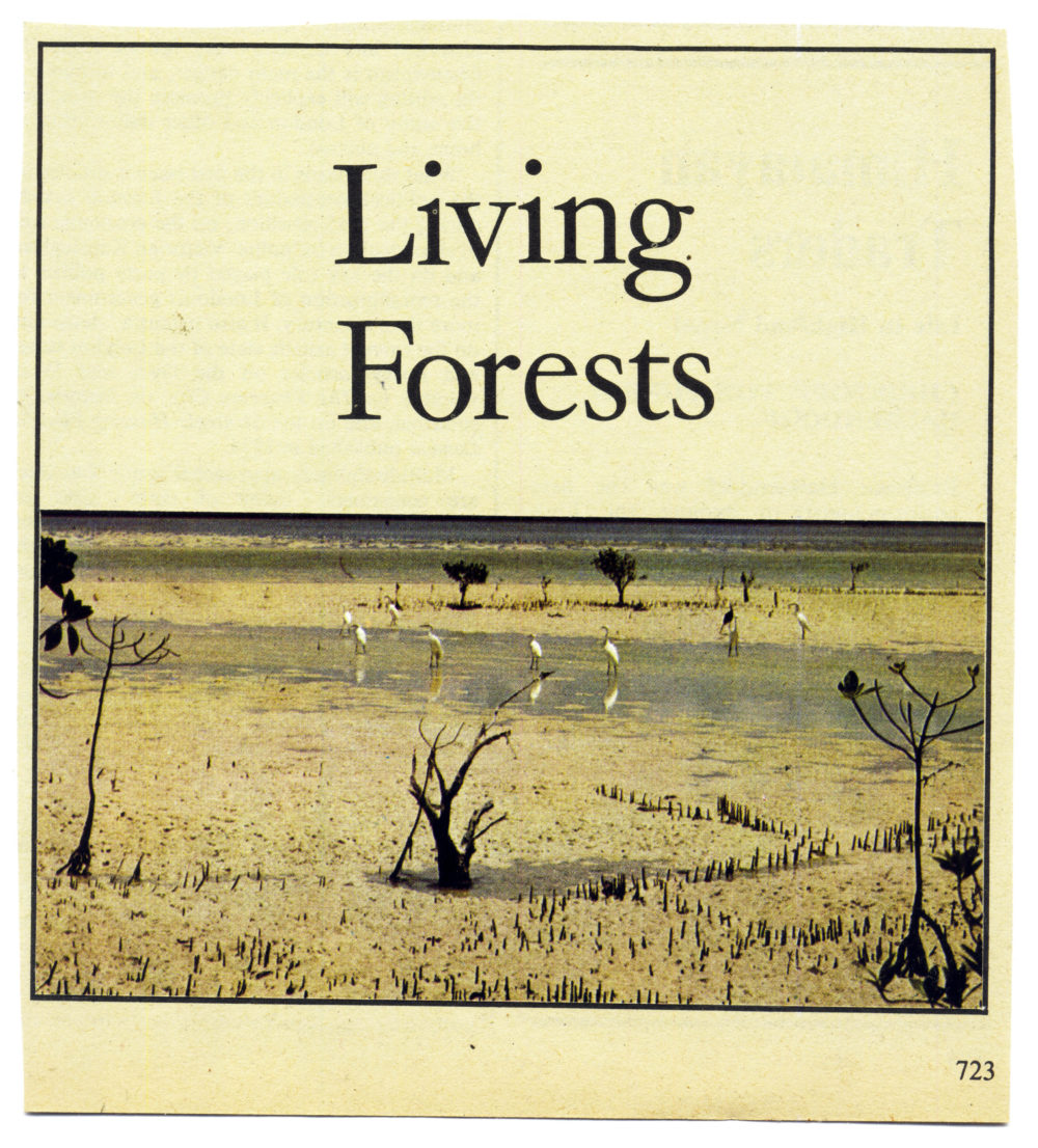 Living-Forests